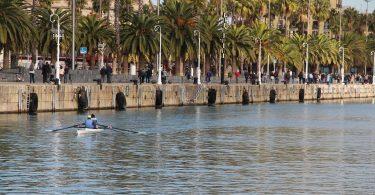 Blick vom Meer aus auf eine Pomenade mit vielen Palmen und links im Bild ein Kajakfahrer