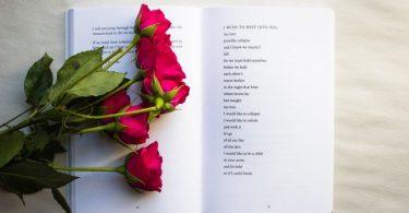 ein offenes Buch mit einem Liebesgedicht in englisch und sieben roten Rosen darauf