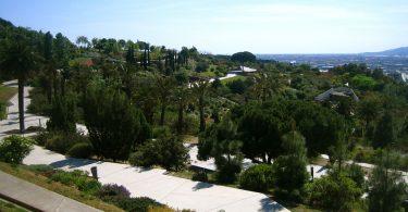 ein freier Weg der leicht Berg ab durch den botanischen Garten führt