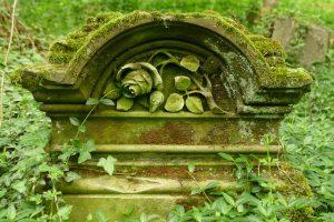 ein Grabstein über den von unten das Efeu hochwächst und oben von Moos bedeckt ist, in der Mitte des Steins ist eine Rose mit Stiel und Blättern eingemeiselt