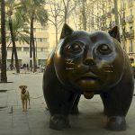 Von dicken Katzen und einem außergewöhnlichen Viertel: El Raval