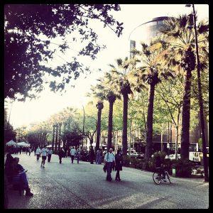 Breiter Bürgersteig mit Palmen, weinige Frussgänger und einem Fahrradfahrer