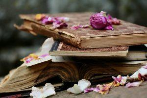 aufgetakelte alte Bücher und Hefte mit getrockneten Rosenblättern darauf und drumherum