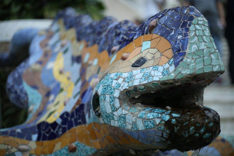 frintaufnahme von dem berühmten Mosaikgeko