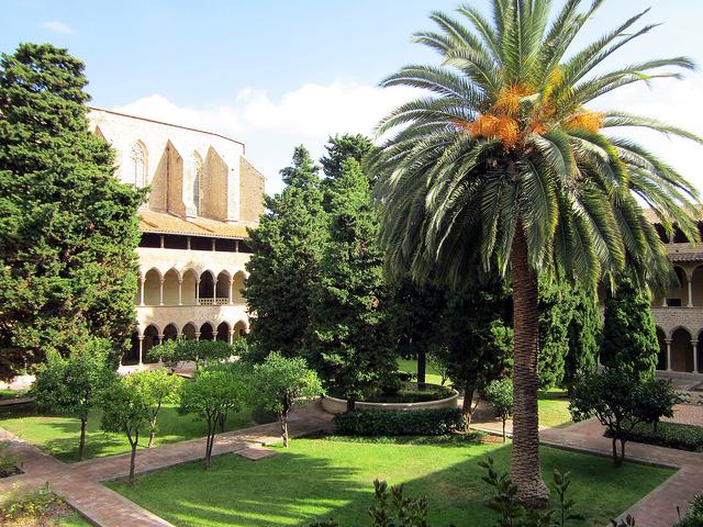 der Innengarten mit Palmen und Bäumen und ein ausschnitt des Gebäudes des Klosters