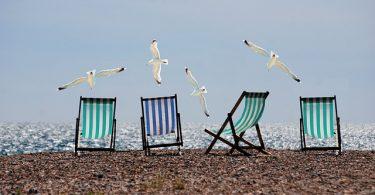 drei Strandstühle an einem Strand nebeneinander Gestell, drei grüne und ein blauer, mit vier Möwen die darüber fliegen