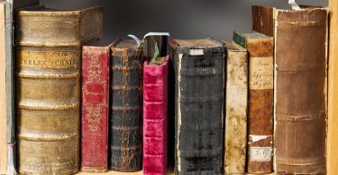 kleiner Ausschnitt eines Bücherregals mit verschiedenen alten und gebrauchten Bücher in braun, rot, schwarz und beige