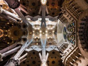 Foto in direktem winkel von unten nach oben vom Gewölbe der Sagrada Familia