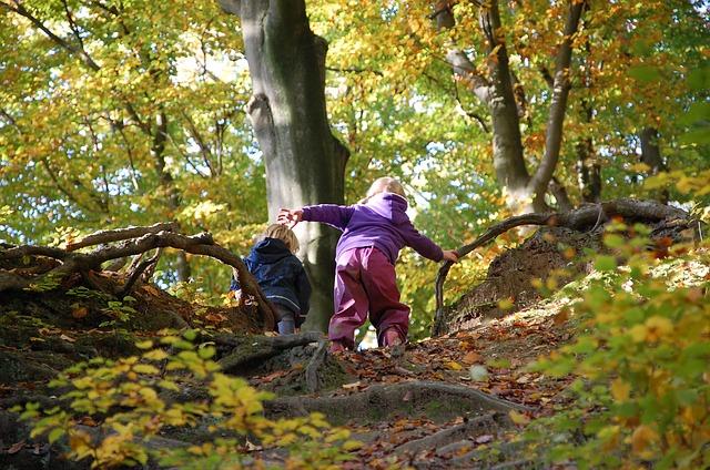 zwei kleine Kinder die im Wald einen Berg mit Baumwurzeln besteigen