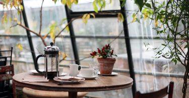 Kleiner Wintergarten mit Pflanzen, einem kleinen runden Holztisch auf dem eine kleine Topfpflanze , eine Tasse und eine Teekanne stehen
