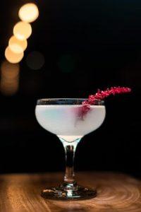 Cocktail in klassisches champangerglass mit langer roter Stilblüte drin