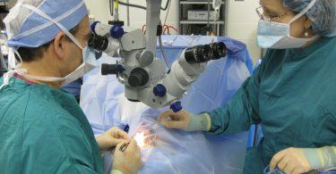 Arzt und Krankenschwester bei einer Kapillartransplantation mit modernster Technik