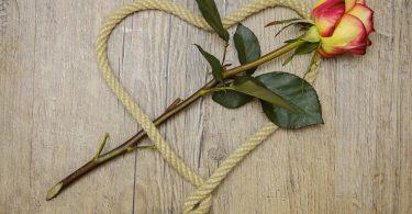 ein beiges Seil in Herzform mit einer rot-gelben Rosen die darin wie ein Pfeil platziert ist