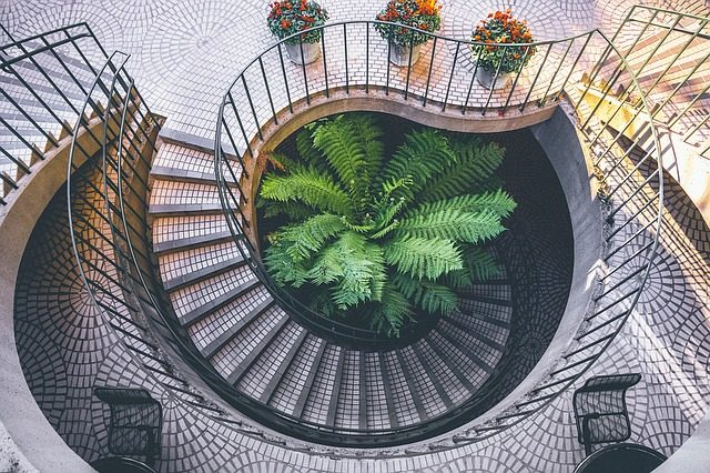 eine spiralförmige Treppe und in der Mitte eine prachtvolle grüne Palme