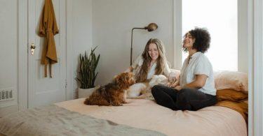 zwei Frauen auf einem Bett die fröhlich einen Hund streicheln